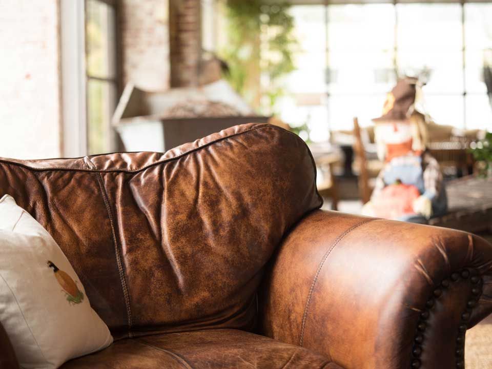 boise upholstery cleaning