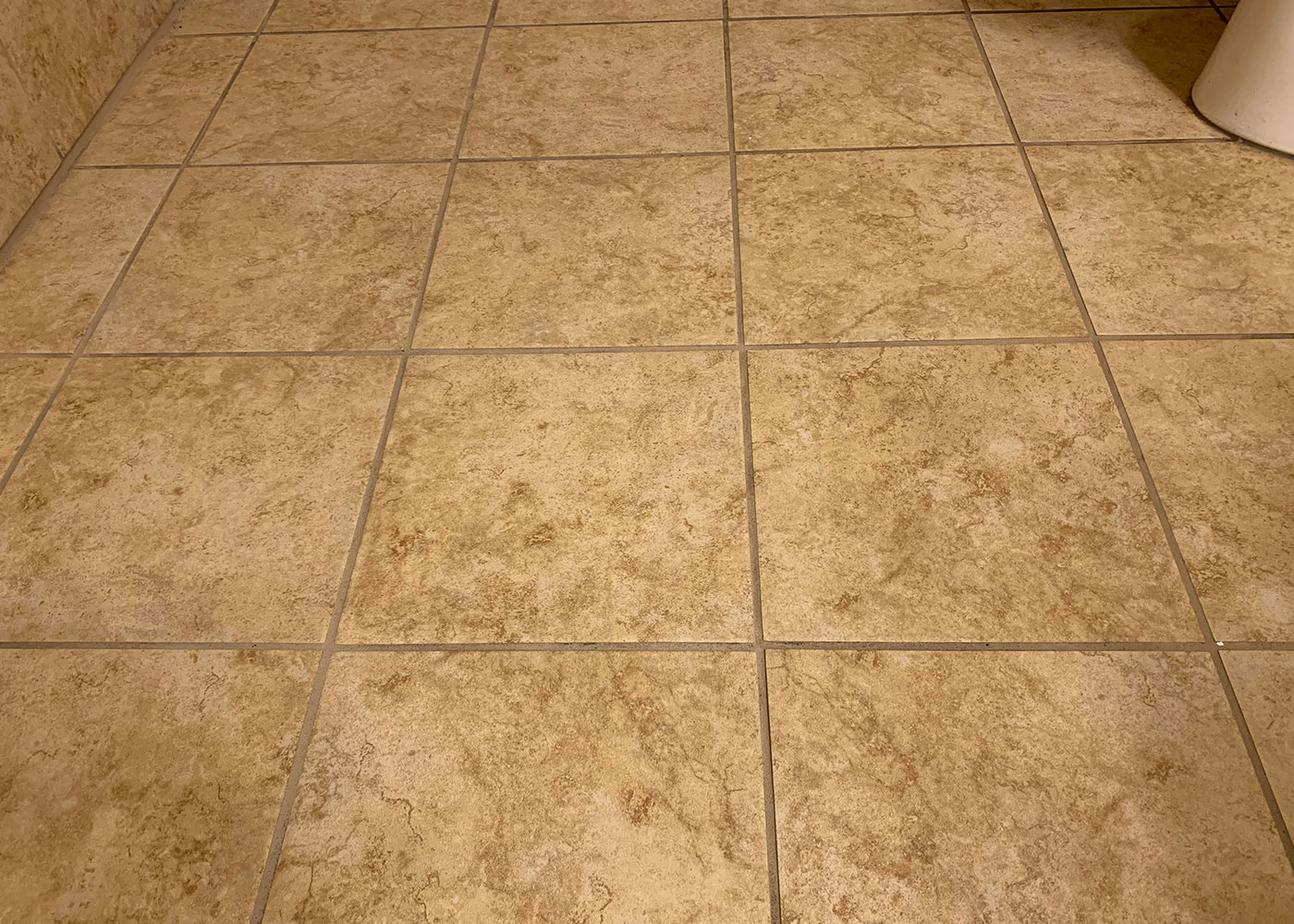 commercial tile cleaners meridian